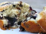 chocolate chip and blueberry muffin