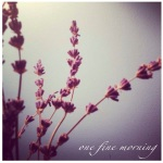 one fine morning